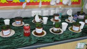 Does the type of liquid a plant gets, affect its growth?